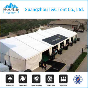 Strong Structure Large Exhibition Dome Tent Outdoor for Events pictures & photos