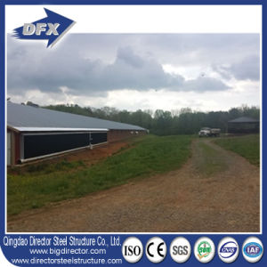 Steel Construction Manufacture Chicken Farming for Poultry pictures & photos