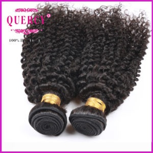 Hair Factory Quality Guaranteed 100% Human Virgin Remy Kinky Curl Human Hair pictures & photos
