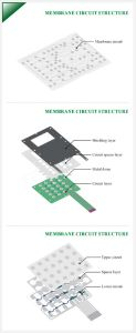 Membrane Switch panel Circuit Structure pictures & photos