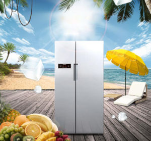 6100lit Luxury Design Double Doors Side by Side Refrigerator pictures & photos