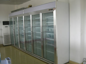 Walk in Cold Storage Freezer pictures & photos