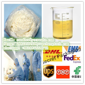 High Purity 99.5% Local Anesthetic Drugs L-Thyroxine / Tetracaine 94-24-6 Mucosal Epidermal Anesthesia pictures & photos