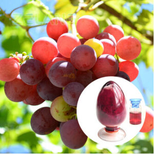 Grape Skin Extract E4 pictures & photos