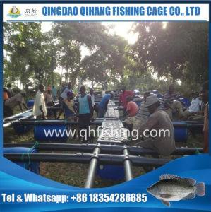 5m X 5m Square Tilapia Farming Net Cage Hou Sale pictures & photos