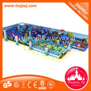 Factory Supply Children Maze Equipment Factory Supply Cheer Kids Soft Gym Amusement pictures & photos