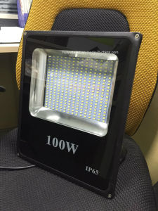 LED Outdoor Light Yellow Color LED Flood Light DC12V/DC24V pictures & photos