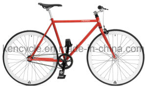 700c Hot Sale Cheap Single Speed Fixed Gear Bike Bicycles Sy-Fx70010 pictures & photos