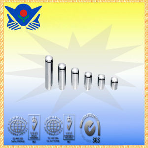 Xc-B25 Stainless Steel Hand Tools Series Advertising Screws pictures & photos