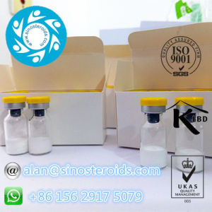 Muscle Gain Powder Human-Growth-Hormone / Human-G-H (GH) 99.7 % Reduce Fat Mass pictures & photos