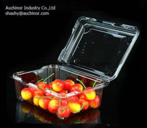 Clear Thermoforming Blister Plastic Pet Hinged Clamshell Container for Cake and Fruit pictures & photos