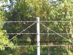 Barbed Steel Iron Wire for Fence with Good Quality pictures & photos