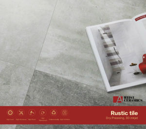 Liberty White Porcelain Floor Tile with Matte Surface pictures & photos