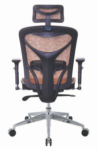 Best Mesh Ergonomic Office Chair pictures & photos