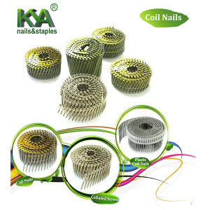 Hi-Load Coil Nails for Nails Machine pictures & photos