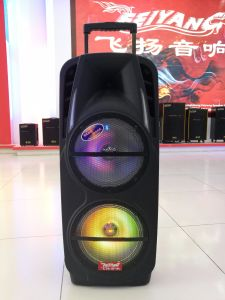 Feiyang/Temeisheng Hot-Sale Double 10 Inch Portable Party Speakers with Bluetooth and Wireless Mic F-73D pictures & photos