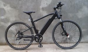 250W 36V Battery Bike Electric Bike pictures & photos