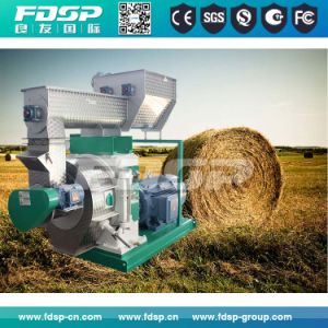 Gear-Driven Biomass Sawdust Pelleting Machine pictures & photos