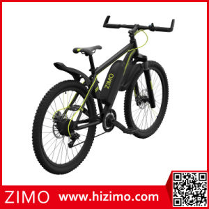 Chinese Mountain E-Bike for Sale pictures & photos