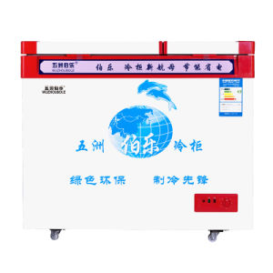 Environmentally-Friendly Design Large Frozen Small Refrigeration Freezer pictures & photos