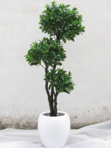Fake Bonsai Tree Potted Plants pictures & photos