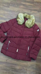Stock Clothing, Very Cheaper Jackets for Man/Lady pictures & photos
