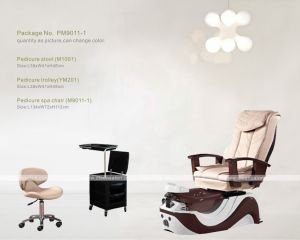 Pedicure SPA Chair (M9011-1) pictures & photos
