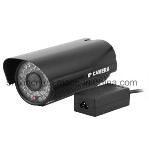 800tvl Outdoor/Indoor Waterproof Night Vision Security Network IP Camera pictures & photos