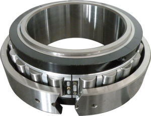 Split Bearing Cylindrical Roller Bearing pictures & photos