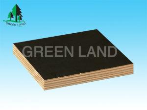 Film Faced Plywood (Black Film)