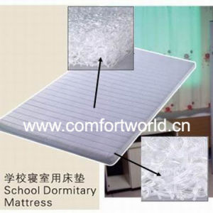 School Dormitory Mattress (SHFJ02568) pictures & photos