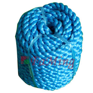 PP and PE Rope (PP0615)