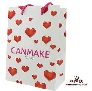 Shopping Paper Bag (112)
