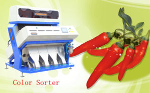 Vsee RGB Color Sorter for Dry Chili Processing pictures & photos