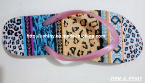 Adult Sandy Flip Flop Sandals pictures & photos