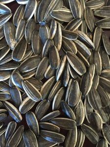 New Crop Sunflower Seeds for Exporting pictures & photos