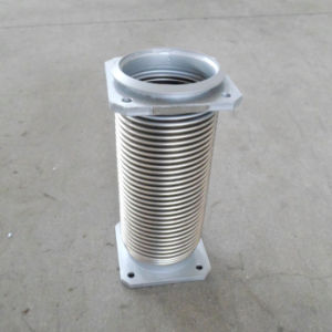 Flange Connection Metal Flexible Hose pictures & photos