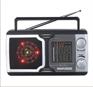 FM/TV/AM/SW1-9 12 Band Radio Receiver with Flashlight (BW-1312L)