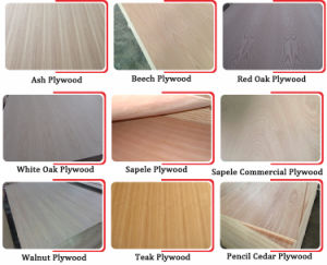 18mm Interior Fancy Plywood Furniture Plywood MDF for Home pictures & photos