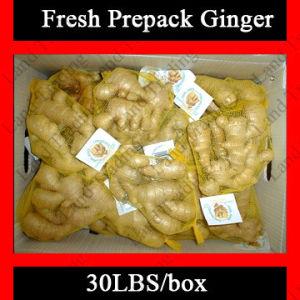 Fresh Prepack Ginger Root (150g, 200g, 300g, 400g, 500g)