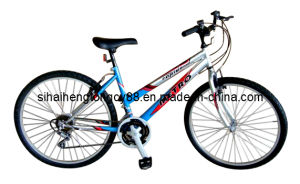 Mountain Type Lady Bicycle for Hot Sale (SH-CB015) pictures & photos