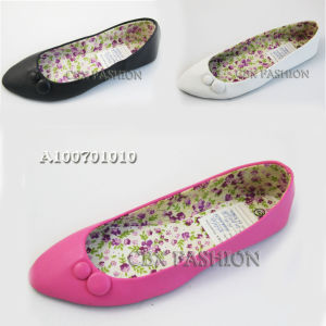Fashion Pointed Toe Flat Heel Women Ballet Shoes (A100701010)