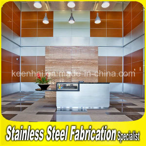 Interior Decorative Stainless Steel Metal Wall Cladding pictures & photos