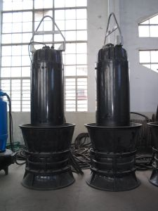 Submersible Propeller Pump with Axial-Flow/Mixed-Flow (ZQB/HQB) pictures & photos