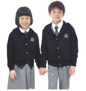 2012 Custom New Design Primary School Uniform-Su45 pictures & photos