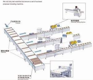 Layer Cake Automatic Feeding and Packaging Machine pictures & photos
