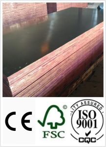 Brown Film Faced Plywood/Construction Plywood/Concrete Formwork (HL016) pictures & photos