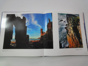 Custom Artwork Cheap Leafleat Booklet Printing pictures & photos