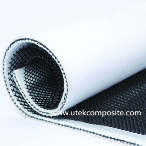 Bi-Planar 3D Drainage Geonet Composite Geotextile for Landfill pictures & photos