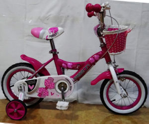 Beautiful Good Quality Girl Bike Children Bicycle (FP-KDB139) pictures & photos